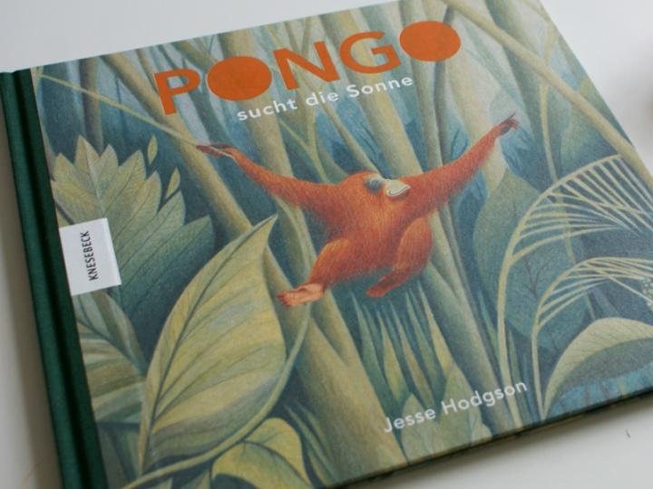 Pongo sucht die Sonne