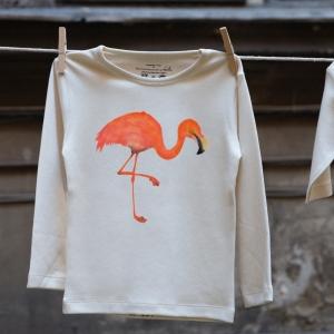 flamingo_9275_98_104