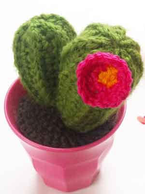 FrauApfelkern-Kaktus-Gehaekelt