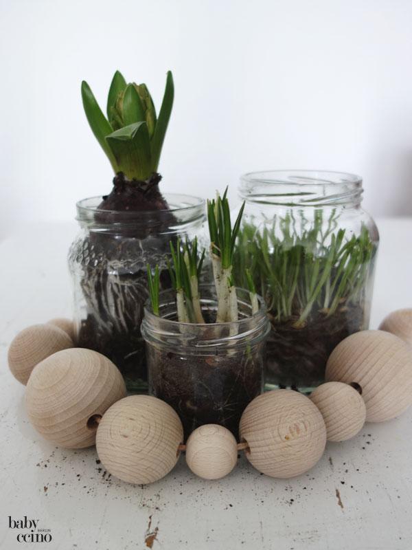 Fruehlingspflanzen-diy-4