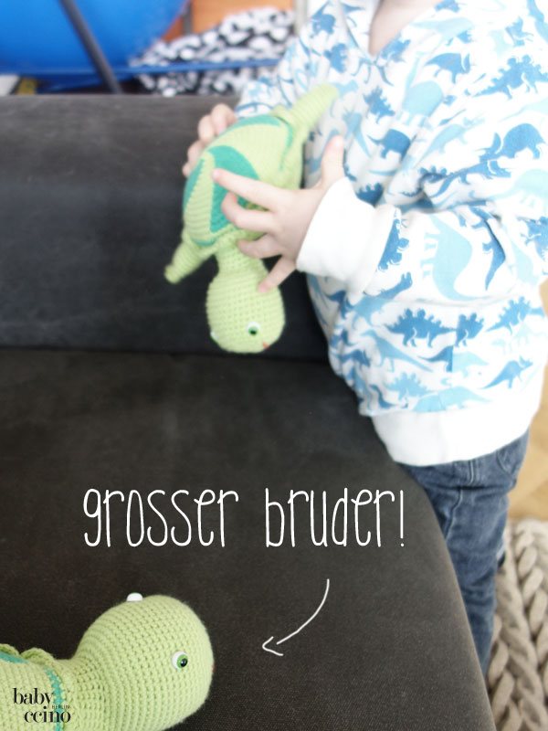 Geschwisterkind-Grosser-Bruder-werden-TB