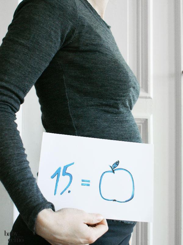 MomToBe-schwangerschaftstagebuch-ssw15