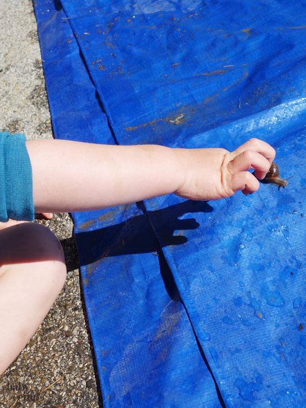 Zelturlaub-camping-mit-kleinkind-14